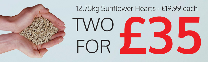 2 For £35 Sunflower Hearts, Premium and Mealworms