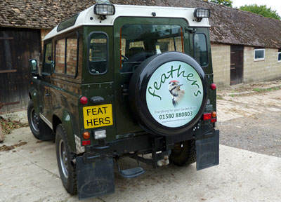 Free Bird Food Delivery in East Sussex